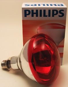 Lamp rood